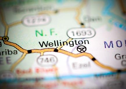 WELLINGTON PROPERTY MANAGEMENT SOLUTIONS