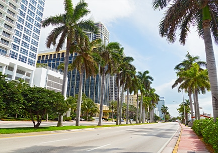 ABOUT MIAMI SPRINGS