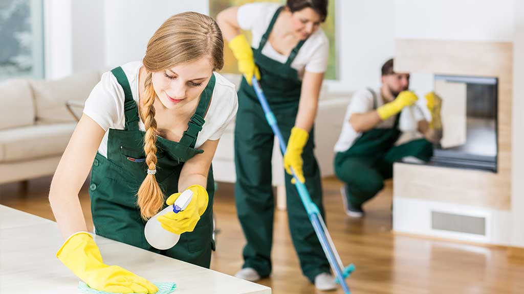 6 Clean the Property