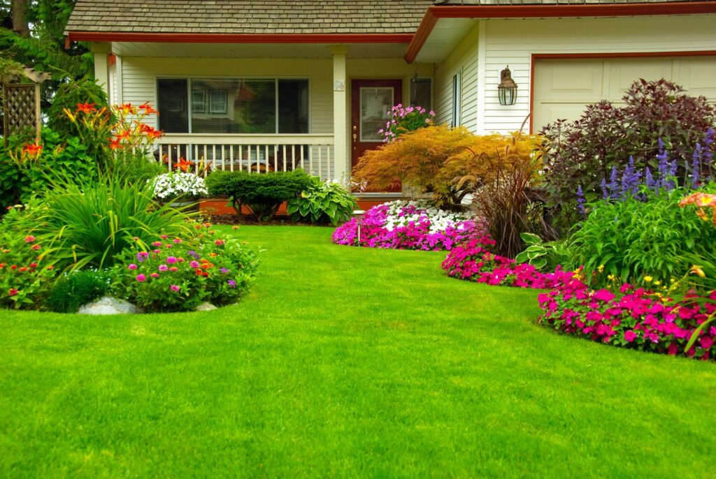 Landscaping the Lawn