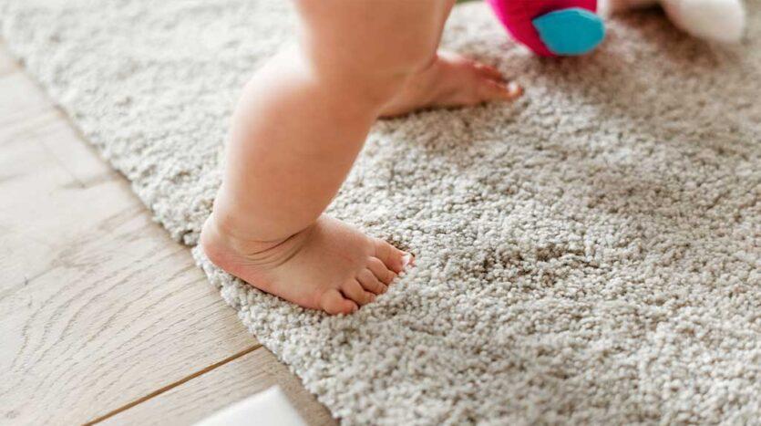 3 Carpet