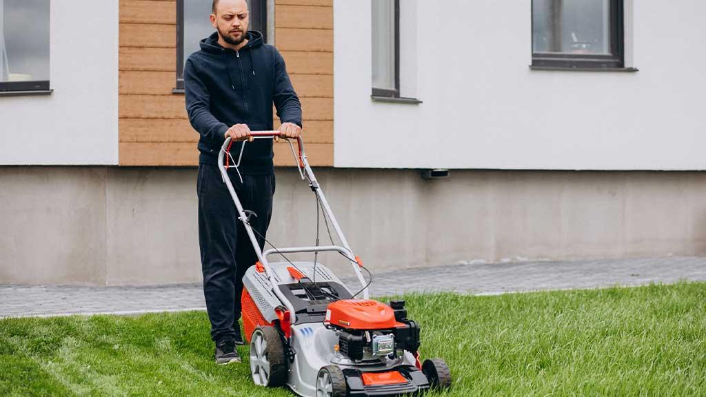 1 General Lawn Maintenance
