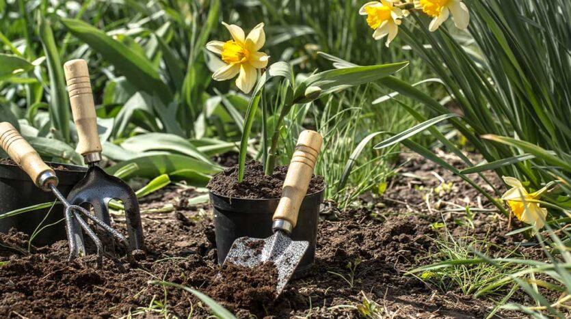 Prepare Your Garden