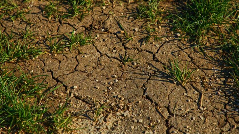 Soil Erosion and Rental Homes Prevention is the Best Strategy Featuers images