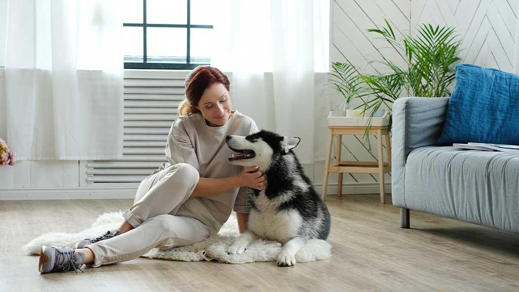 flooring pet-proof