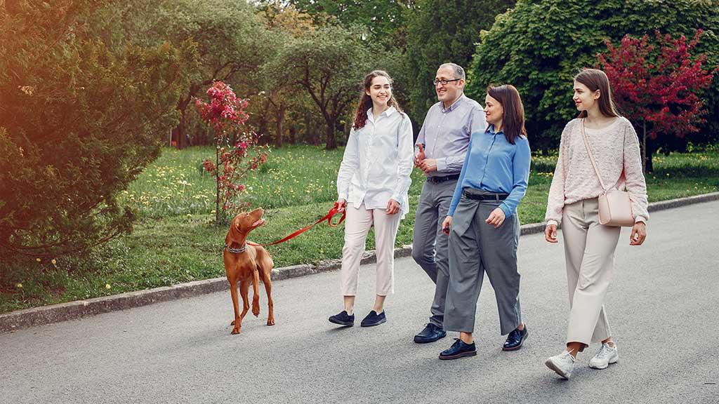 neighborhood pet-friendly