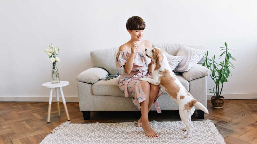 9 Tips on Buying a Pet-Friendly Home