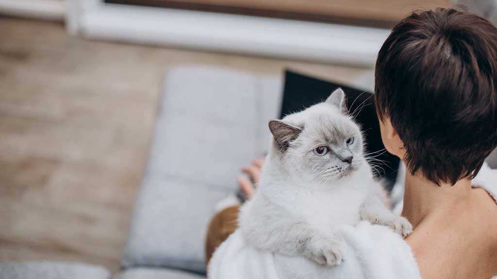 Questions for Cat Owners