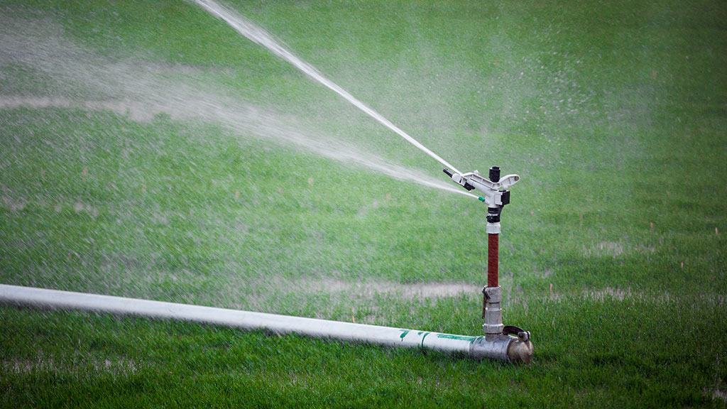 Inspect Your Sprinklers