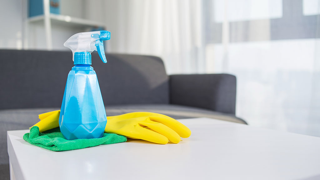The Property's Cleanliness