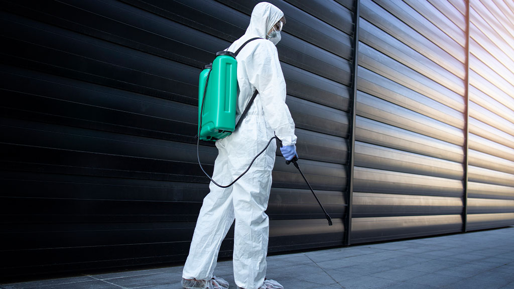 What are the responsibilities of a landlord when it comes to pest control?