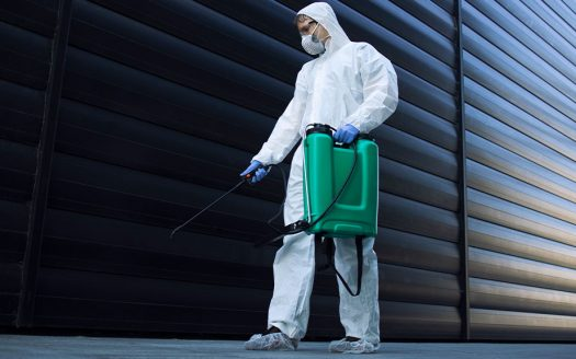Who is Responsible for Pest Control in a Rental Property?