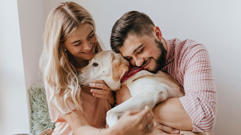 A Landlord's Guide to Renting to Pet-Owning Tenants