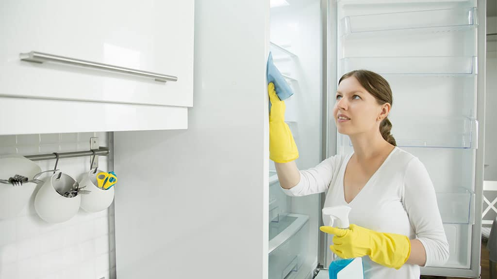 Dust your refrigerator coils