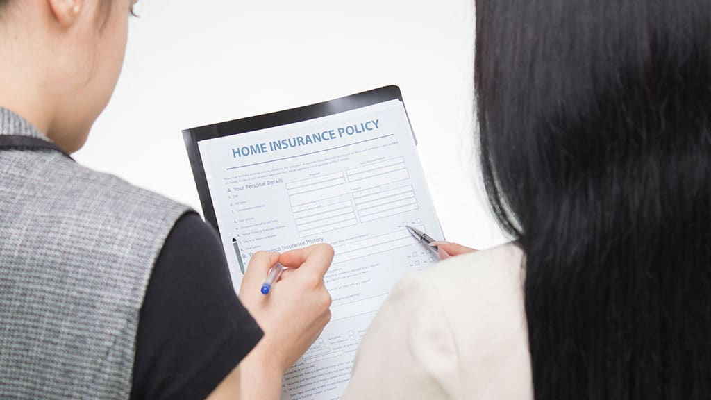 What common lies do homeowners tell when applying for insurance?
