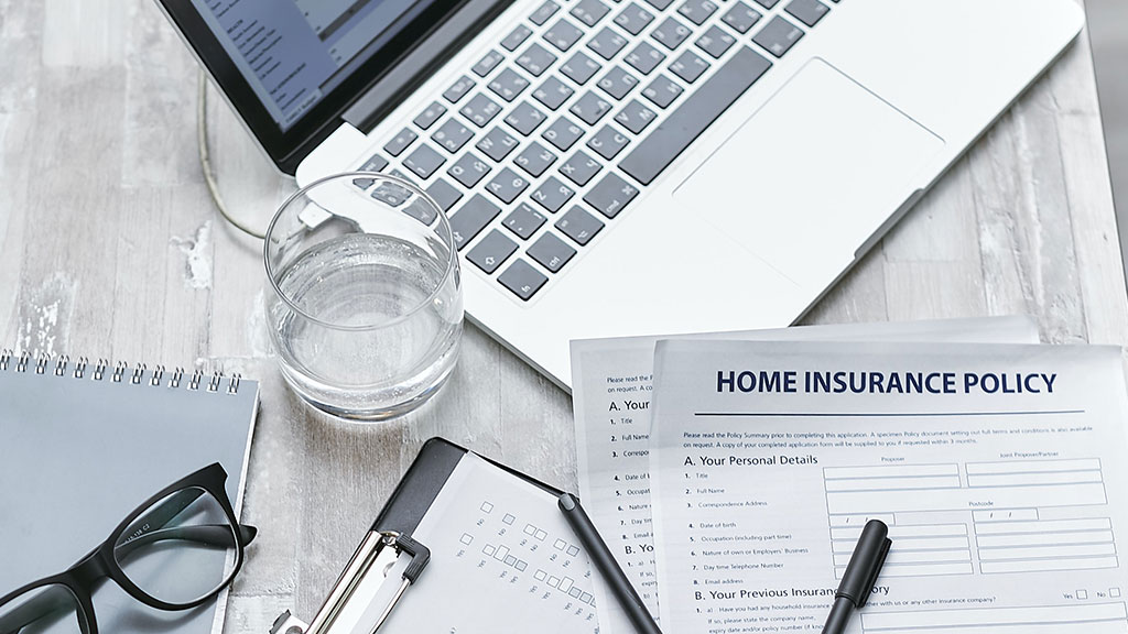 When does home insurance cover mold?