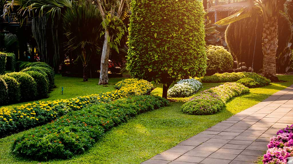 Low-Cost Landscaping Ideas to Up Your Home's Value